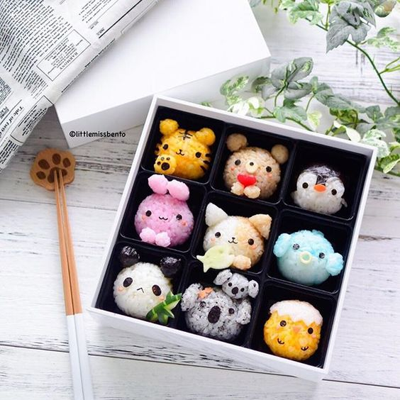 Kawaii Onigiri and Bento